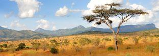Highlights Namibia